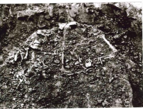 Kostaq Stefa's remains