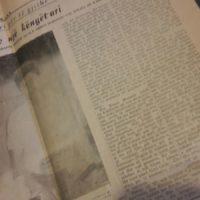 Articles translated by Adela Kolea 4
