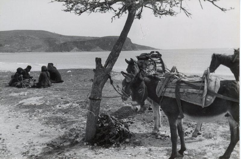 Le donne lamentatrici dell'Albania, Archivio Tagliarini