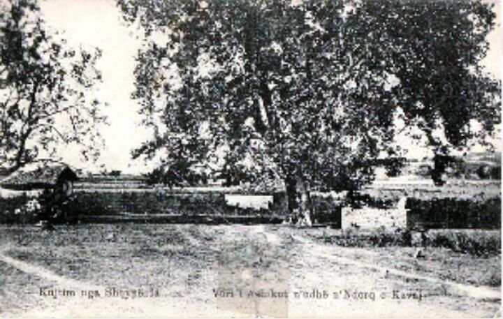 Varri i Ashikut
