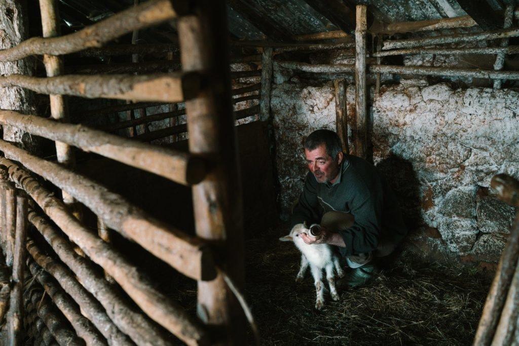 Pavlin Marku (bari, Hamzi, Shqipëri)